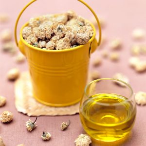 huile-de-fleurs-de-camomille